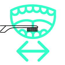 teeth being brushed with directional arrows