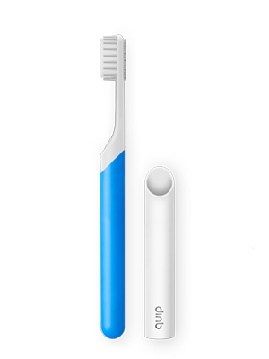 Quip store product starter brush blue 300x400