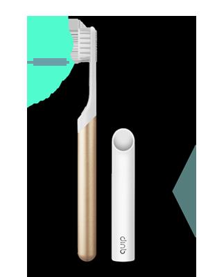 Quip store product starter brush plan yr plan gold 300x400